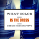 Strategic Revolution The Dress